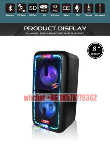 Stage DJ Speaker with Colorful Light SL208-09 pictures & photos