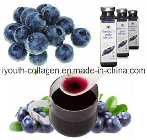 EU Quality Organic Blueberry Pulp/ Fruit Juice, Rich Anthocyanin, SOD, Anticancer, Anti-Aging, Antibacterial, Prevention of Gastric Cancer and Dementia, Food pictures & photos