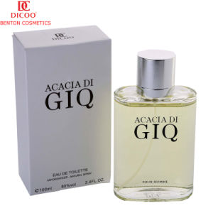 Hot Sale Cheap 100ml Perfume for Daily Use