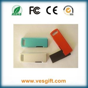 USB Flash Drive/USB Stick/Pendrive pictures & photos
