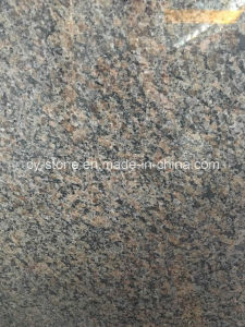 Caledonia Granite Tile for Countertop/Vanity Top/Bench Top/Flooring/Wall Tile pictures & photos