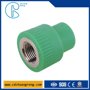Polypropylene Pipe Specifications PPR Female Threaded Coupler pictures & photos