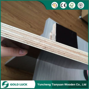 Film Faced Plywood for The Shuttering and Form Works pictures & photos