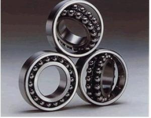 Self-Aligning Ball Bearing/Fkd Bearing/Fe Bearing/Hhb Bearing pictures & photos