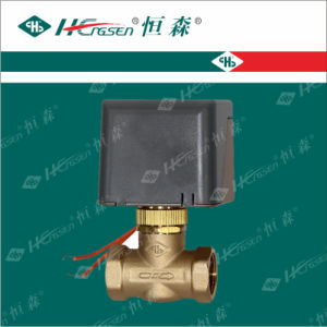 Motorized Valve Df-02 / Brass Ball Valve pictures & photos