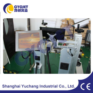 Automatic Laser Marking System for Stainless Steel pictures & photos