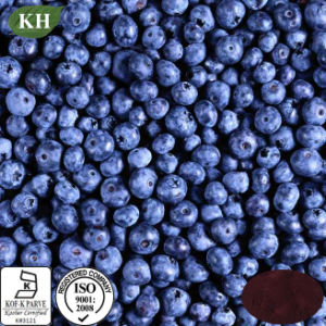 Natural Anti-Oxidant Blueberry Extract Anthocyanins 5%~35%; Anthocyanidins 5%~35%; Pterostilbene 1%-20% pictures & photos