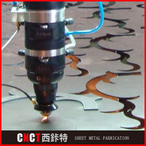 Precision Custom Steel Sheet Laser Cutting Services pictures & photos