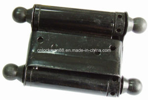 Spring Hinge with Double Action, Door Hinge (SH-009) pictures & photos