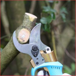 Koham Tools Walnut Tree Branches Cutting Li Battery Loppers pictures & photos