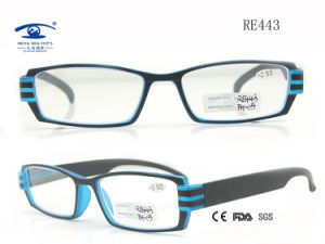 2015 Green Mirror Beautiful New Models Reading Glass (RE443) pictures & photos