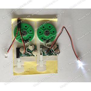 LED Voice Module, LED Sound Module, LED Pre-Recording Voice Chip pictures & photos