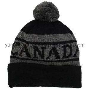 Winter Warm Acrylic Knitted Jacquard Beanie Skull Hat/Cap pictures & photos