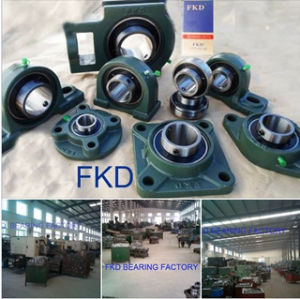 Best Quality Long Life Star Seal Mounted Unit Bearing pictures & photos