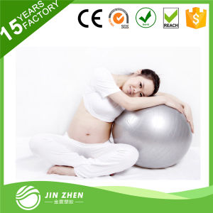 SGS Gym Equipment Fitness Anti-Burst Exercise PVC Yogo Ball