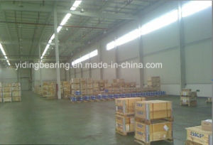 China Supplier Auto Bearing SKF 6308 2z pictures & photos