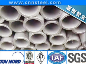 Q/Hyad 101-91 Chemical with Long Seamless Steel Tube