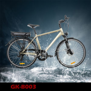 Electric Bicycle 36V Lithium Battery for EU Market and USA Market pictures & photos