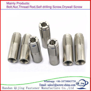 M16 Zinc Plated HDG Drop in Anchor Bolt pictures & photos