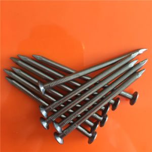 Supper Quality Polished Common Round Iron Wire Nail
