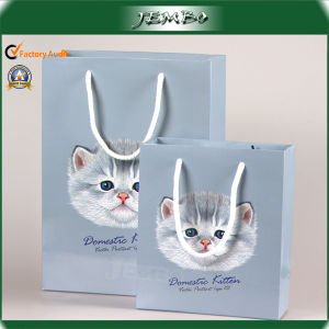 High Quality Cotton Handle Clothes Gift Paper Bag pictures & photos