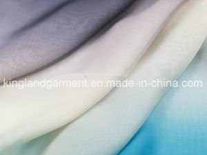 Polyester Light Gradient Colour Inherently Flame Retardant Fireproof Voile pictures & photos