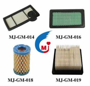 Lawnmower Air Filter Garden Tool Filter of America Market pictures & photos