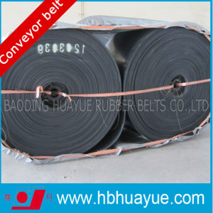 Quality Assured Flat Shaped Nylon Material Conveyor Belt pictures & photos