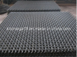 Square Wire Mesh (65Mn, 72B) pictures & photos