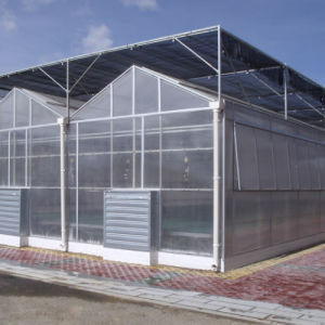 Polycarbonate Material Polycarbonate Sheet PC Used Commercial Greenhouse pictures & photos