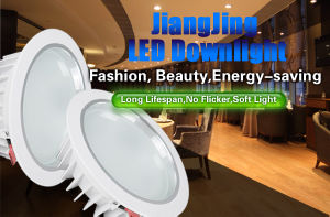 8 Inches LED Down Lamp / 2.5 Inches LED Down Lamp / 3.5 Inches LED Down Lamp