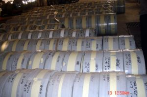 Hot Dipped Galvanized Steel Strip in Coil pictures & photos