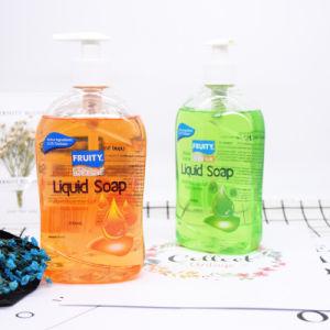 Fruity Aloe Vera Handwash Antibacterial Hand Soap Liquid pictures & photos