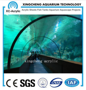 Customized Acrylic Material Curved Acrylic Sheet Aquarium Project pictures & photos