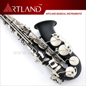 Eb Key Black Lacquer Finish Professional Alto Saxophone (AAS5506K) pictures & photos