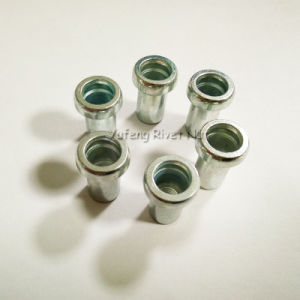 Large Flat Head Rivet Nut pictures & photos