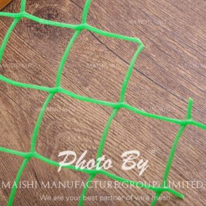 HDPE Flat Square Mesh Net pictures & photos