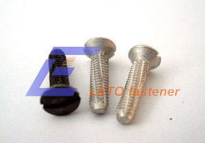 DIN7513-Slotted Cutting Screw pictures & photos