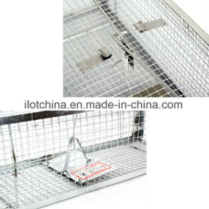 Ilot The Mouse Hotel Humane Mousetrap Live Capture pictures & photos