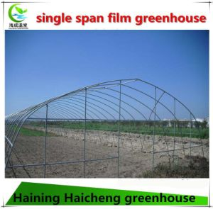 Cheap Price Plastic Film Single-Span Greenhouse for Tomato pictures & photos