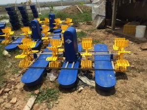 Paddle-Wheel Aerator pictures & photos