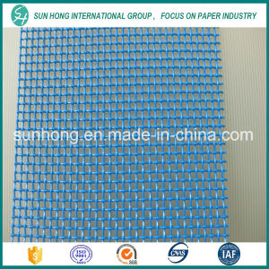 2 Shed Plain Weave Filter Fabrics for Paper Making Industry pictures & photos