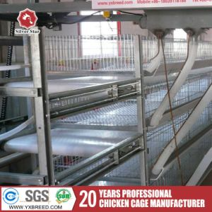 Specialized Products Galvanized Cheap Bird Cage Poultry Farming Equipment pictures & photos