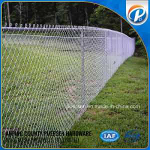 PVC Coated Galvanized Chain Link Fence 50*50mm pictures & photos