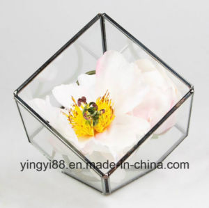 Wholesale Glass Geometric Terrarium for Hanging pictures & photos