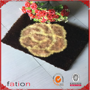 100% Polyester Home Textile Entrance Floor Mat pictures & photos