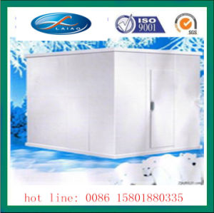 Coldroom with PVC Curtain Ice Room Storage Freezer pictures & photos