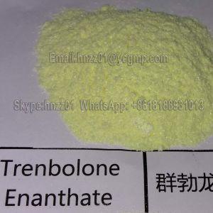 Trenbolon Enanthate 10161-33-8 Trenbolon Powder Muscle Building Steroid pictures & photos
