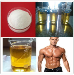 Body Fitness Steroid Clostebol Acetate/4-Chlorotestosterone Acetate Powder CAS 855-19-6 pictures & photos