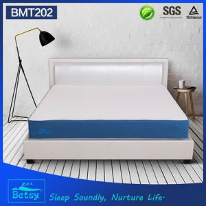 OEM Resilient Memory Foam Royal Mattress 25cm High with Knitted Fabric Detachable Zipper Cover pictures & photos